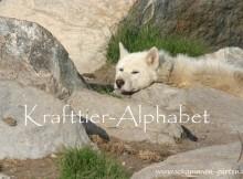 Krafttier-Alphabet