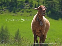 Krafttier Schaf