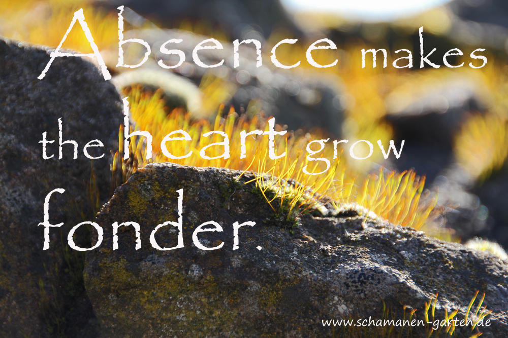 Absence makes your heart grow fonder