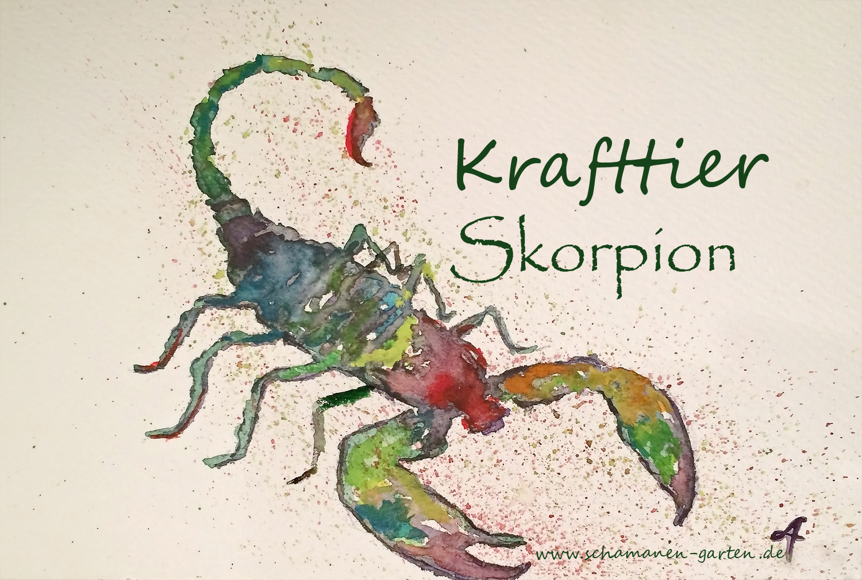 Krafttier Skorpion, hier Aquarell in Regenbogenfarben