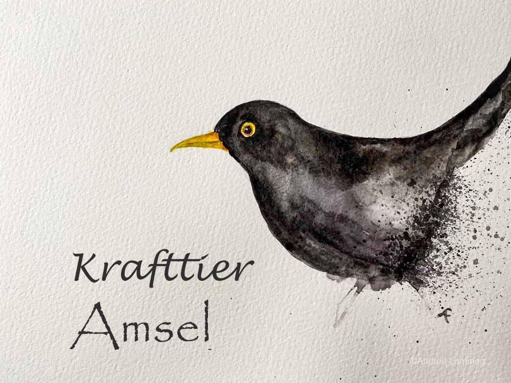Krafttier Amsel